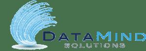 DataMind Solutions Logo