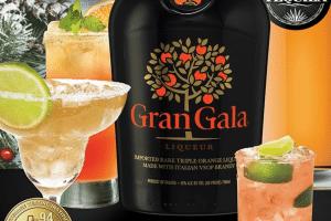 Datamind Grand Gala