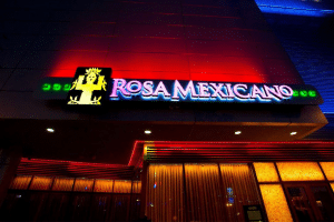 Rosa Mexicano Datamind